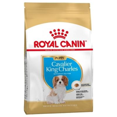 Karma sucha dla psa Royal Canin Size Breed Cavalier 1.5 Kg