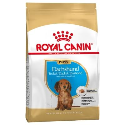 Karma sucha dla psa Royal Canin Size Breed Dachshund Puppy 1,5kg